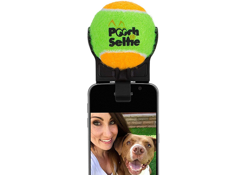 Pooch Selfie Dog Products