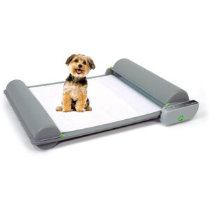 Indoor Dog Potty for Puppies